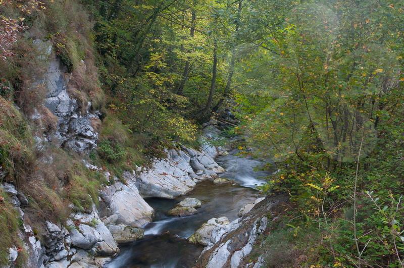 Foces del rio Aller