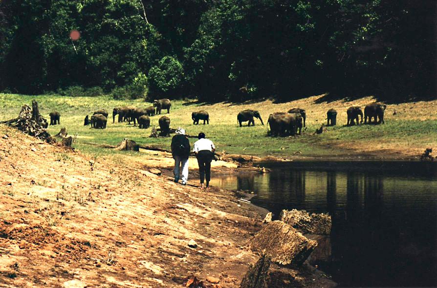 Mit Joseph Karoor im Periyar-Nationalpark, Kerala (Indien), Tonaufnahmen ganz nah  (Foto Ruth Wäfler)