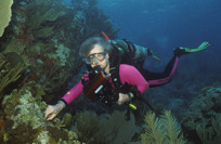 Tauchen bei Culebra / Karibik (Foto Walter Rieder)