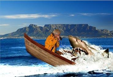 Mit dem Weissen Hai in Südafrika (Montage), während einer Reportage über den Weissen Hai