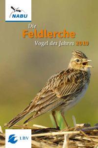 181011_kinderbuchfeldlerche_300x200.jpg
