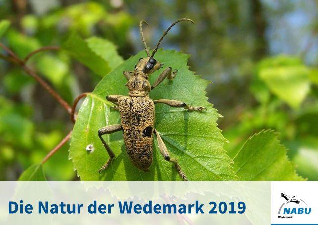 Kalender2019_Deckblatt_web_ws.jpg