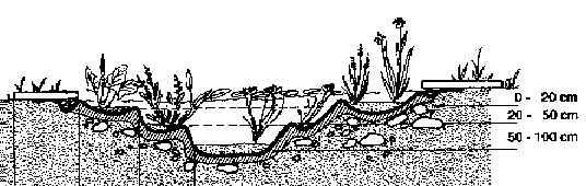 Profil eines Gartenteiches