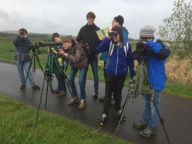 NAJU 2019-04-28_Birdscout_NAJU-Teens bei der Vogelbeobachtung; Alfred Raffius_ws.jpg
