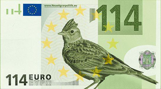 114€_Feldlerche_freigestellt.jpg