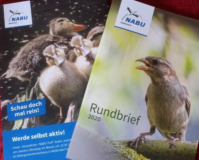 NABU Wedemark Rundbrief 2020_S2+3_ws.jpg