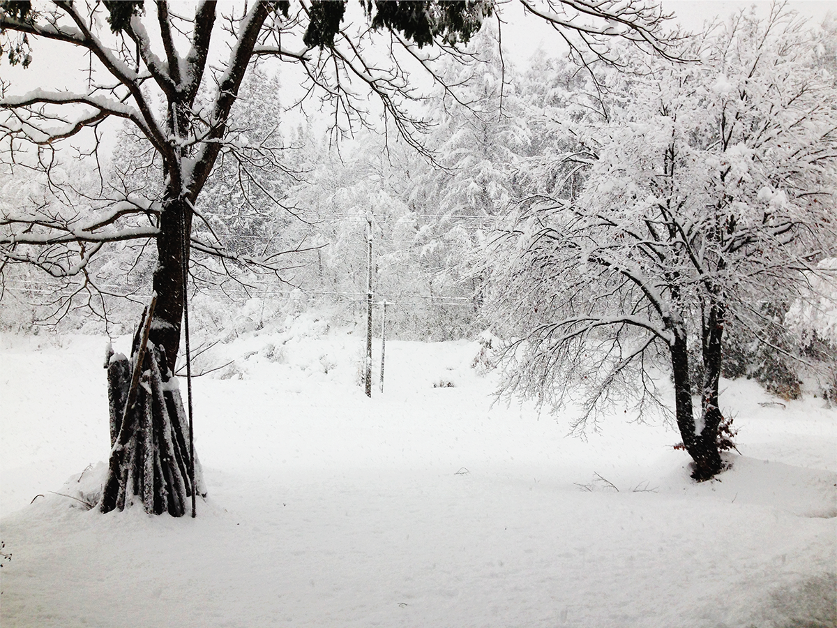 1月 雪景色(宇津沢)