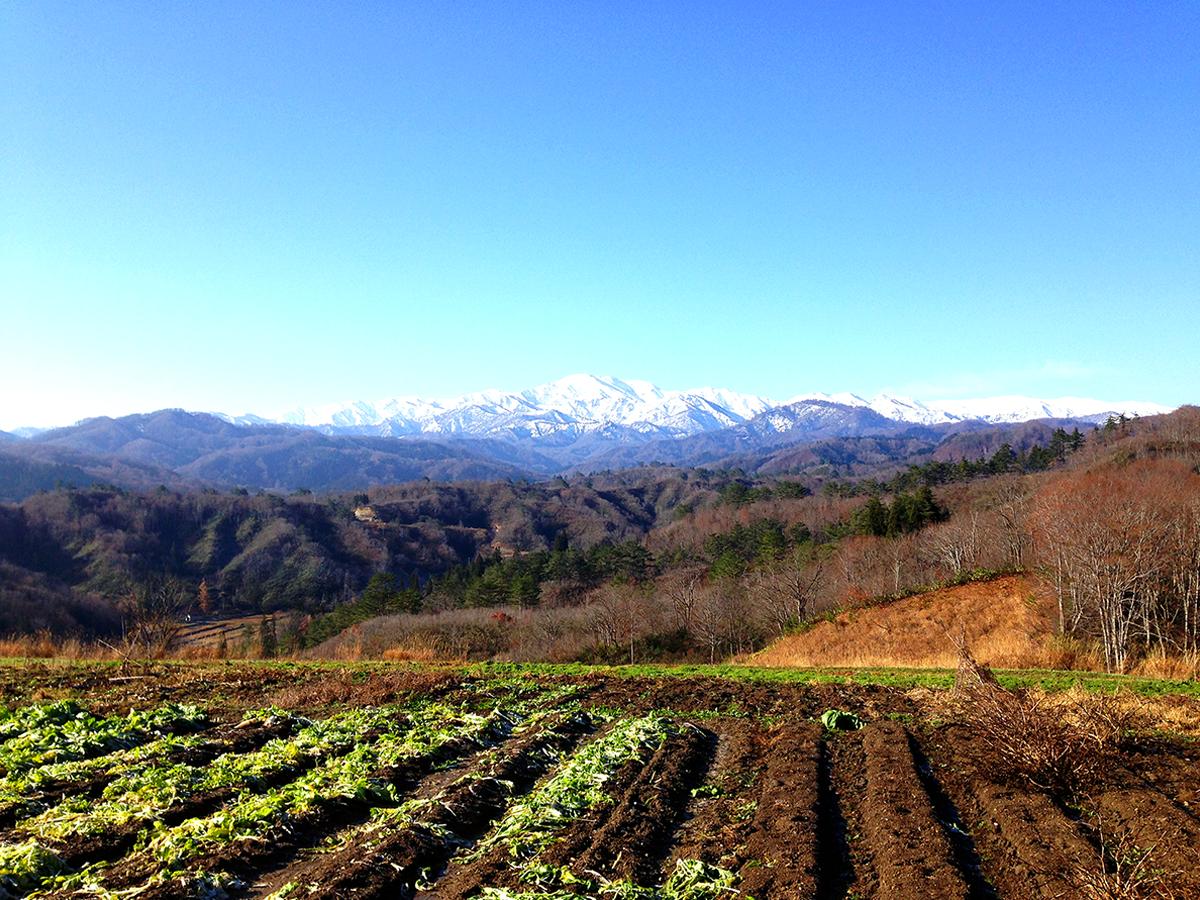 10月 体験農園から望む飯豊山(宇津沢)