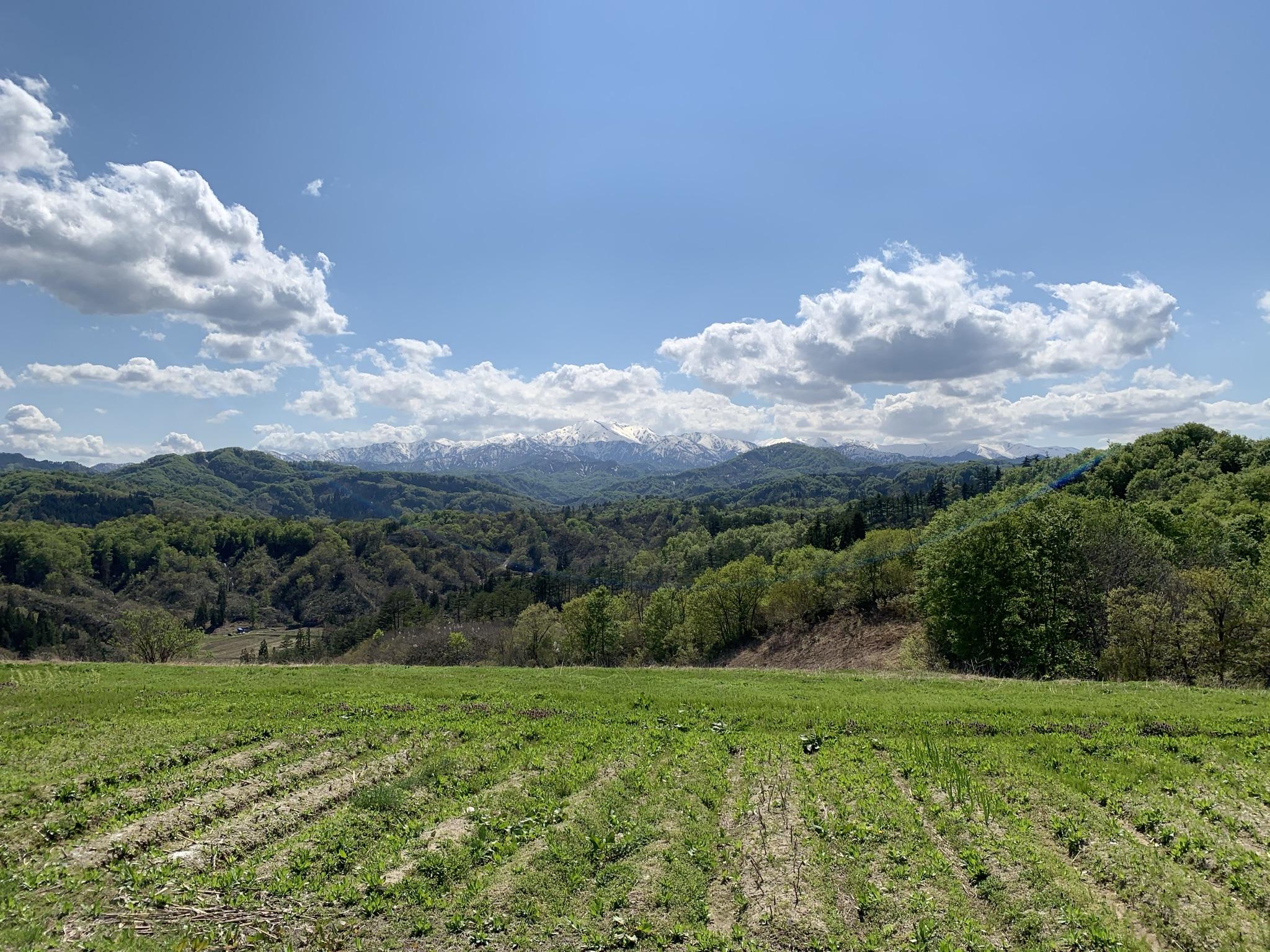 5月 体験農園から見える飯豊山(宇津沢)