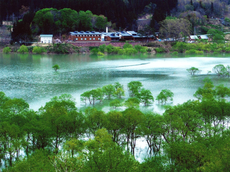 5月 新緑のころの白川湖(須郷)