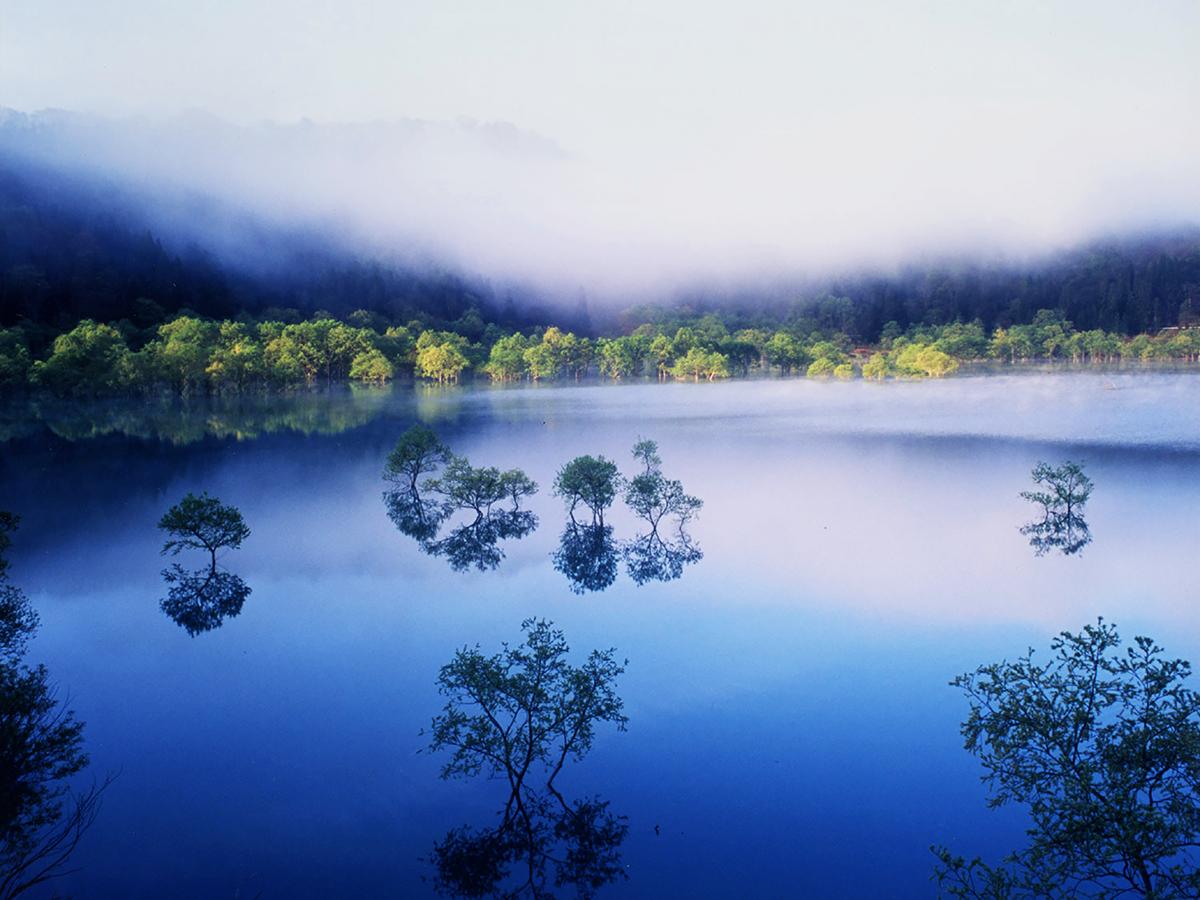 photo25:平成18年フォトコンテスト受賞作【朝靄の白川湖】