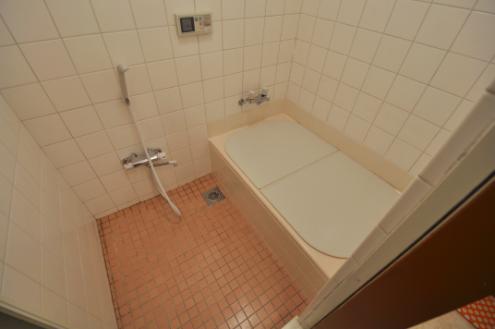 ドミンゴ桜新町浴室