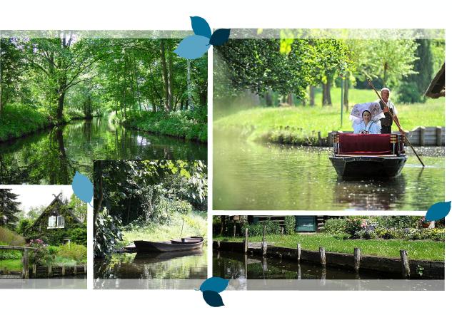 GOLßENER - Feinkostsalate - Design Relaunch der Verpackung unter dem Aspekt Regionalität - Spreewald - Produkt Design - DesignKis - 2013