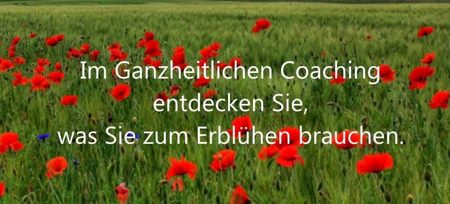 Im Ganzheitlichen Coaching entdecken Sie, was Sie zum Erblühen brauchen.