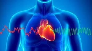 Conseguir equilibrar el corazón influye en el cerebro y el resto del cuerpo