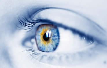 El movimiento bilateral de los ojos lo usamos todas las noches durante la fase de sueño REM