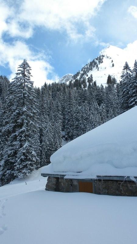 noch viel Schnee im Steibode