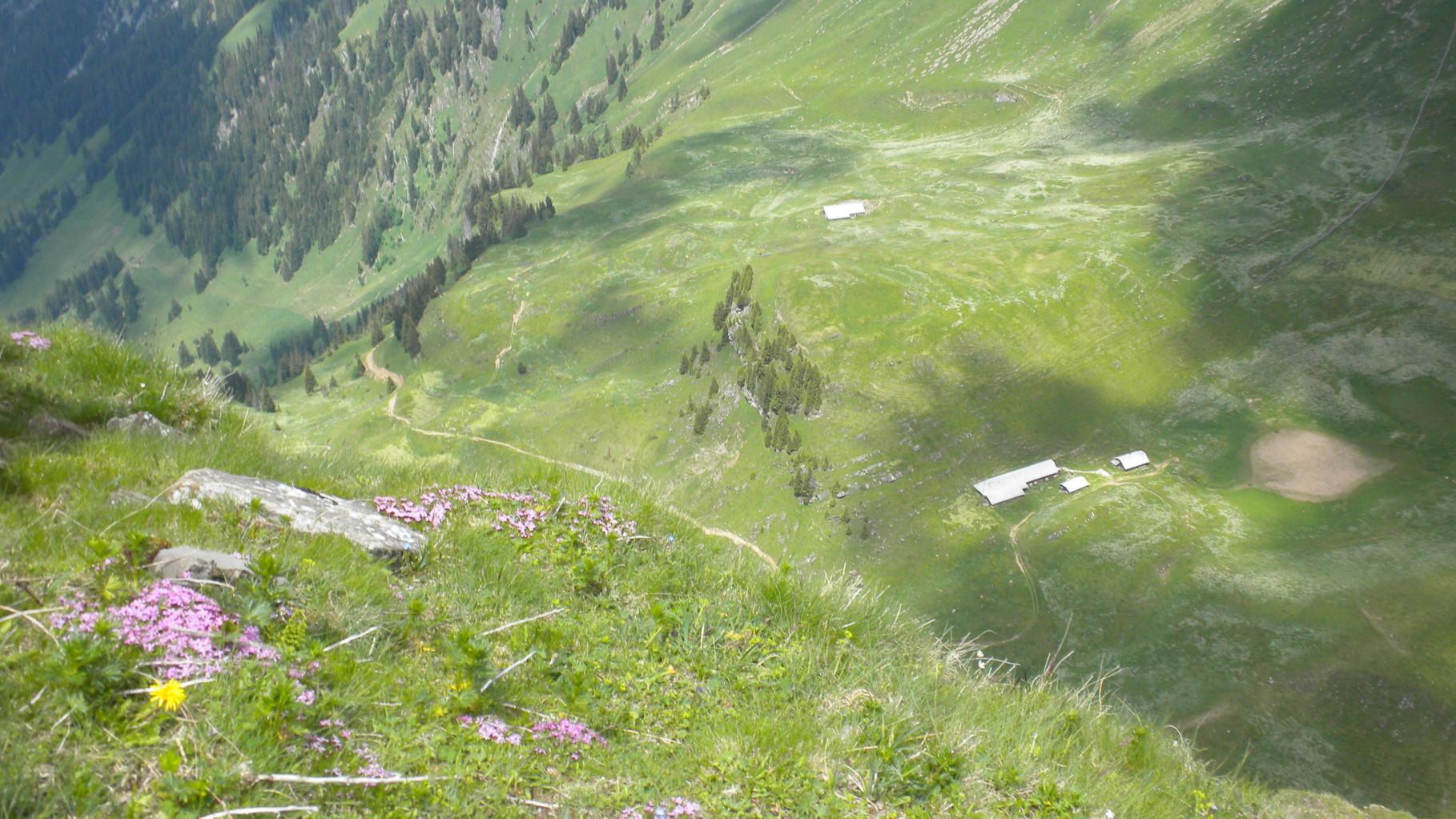 Tiefblick auf die Alp Gurbs