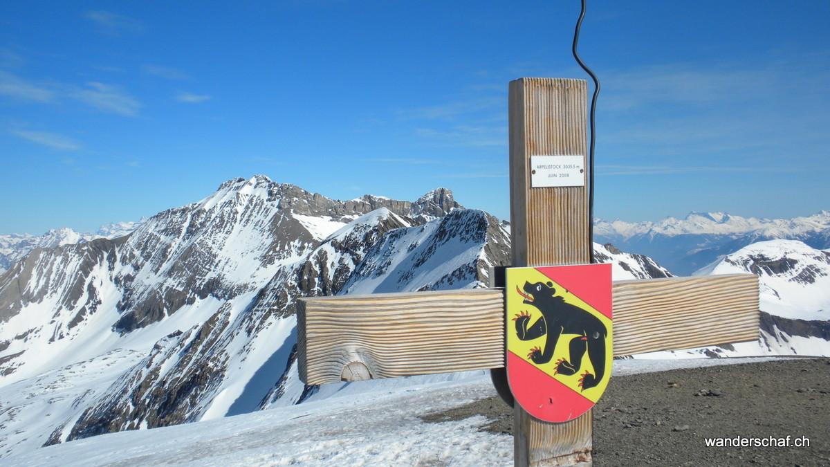auf der Bernerseite erblicken wir das Wildhorn
