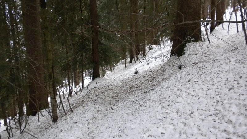 zum Heulen, wie der Wärmeeinbruch mit dem Regen den vielen Schnee weggefegt hat!