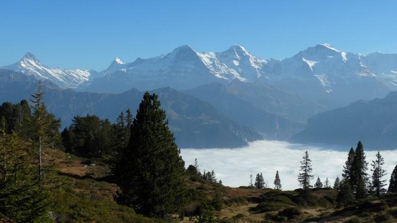 Eiger, Mönch, Jungfrau und das Nebelmeer