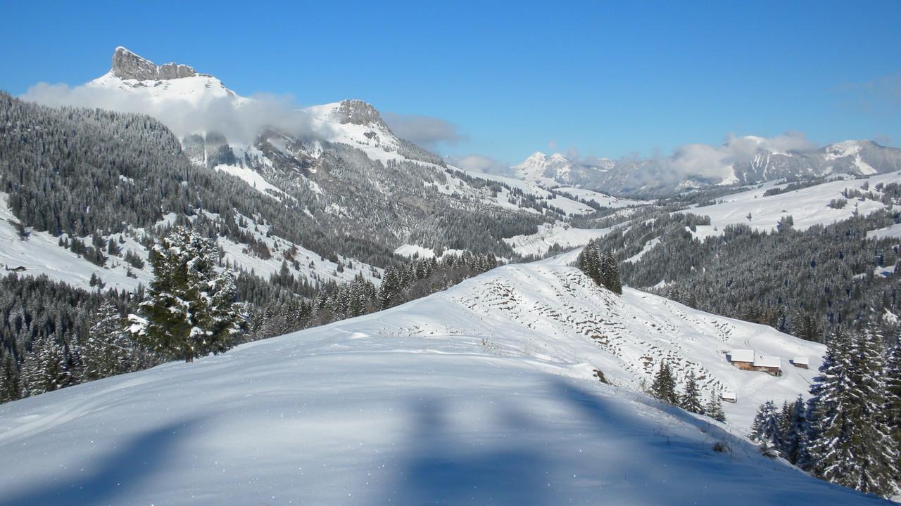 unser Abstieg über Habchegg Richtung Harzisbode