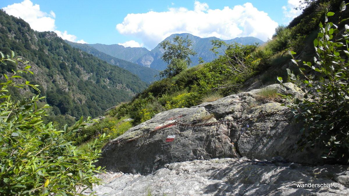 oberhalb Alpe Serena
