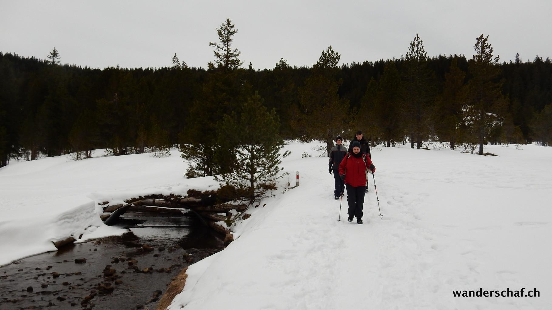 in der Annahme, dass sich der Föhn schon verabschiedet hat, entscheiden wir uns die geplante Schneeschuhtour abzusagen und machen einen kurzen Spaziergang über den  Winterwanderweg