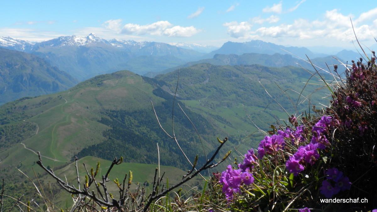Aussicht Richtung Bergamasker Alpen