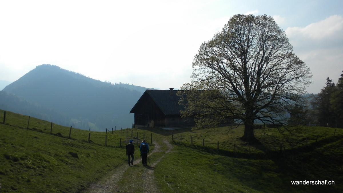 Abstieg Richtung Brunnadern