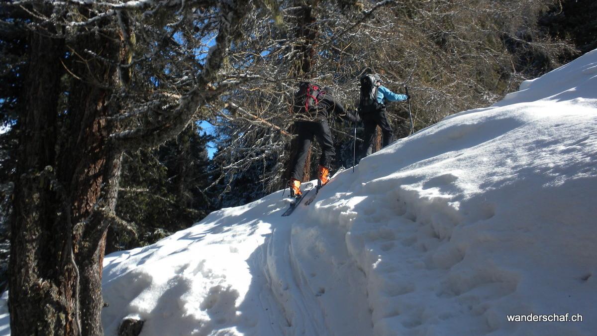 abwechslungsreiche, aber anspruchsvolle steile Waldpartie nach....