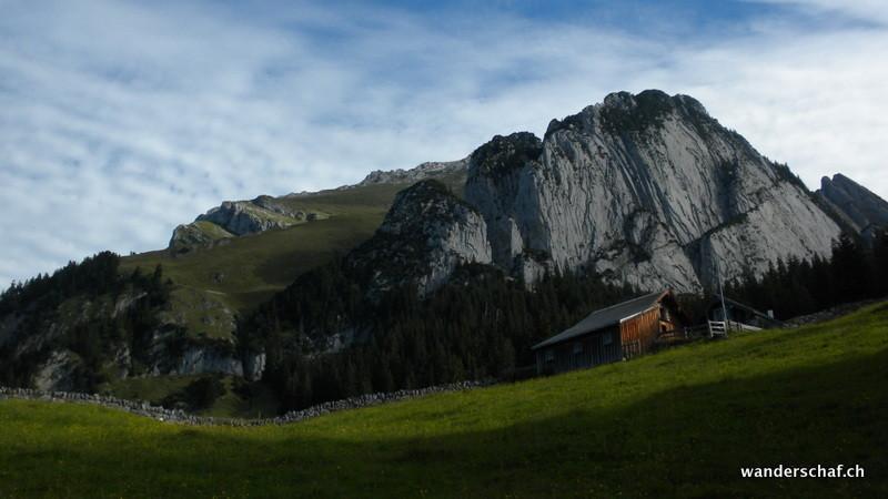 Blick von Gamplütt Richtung Wildhuserschafberg-Aufstieg