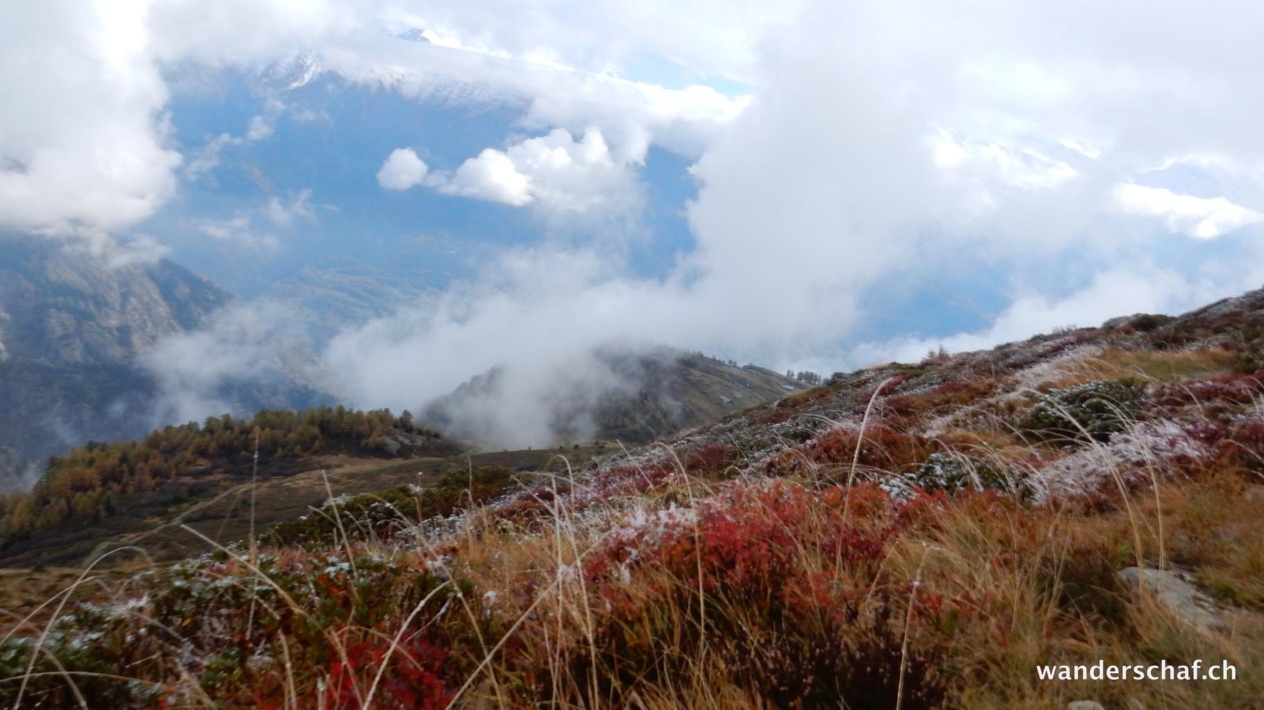 die Herbstfarben tun gut im unverhofften Nebelgrau