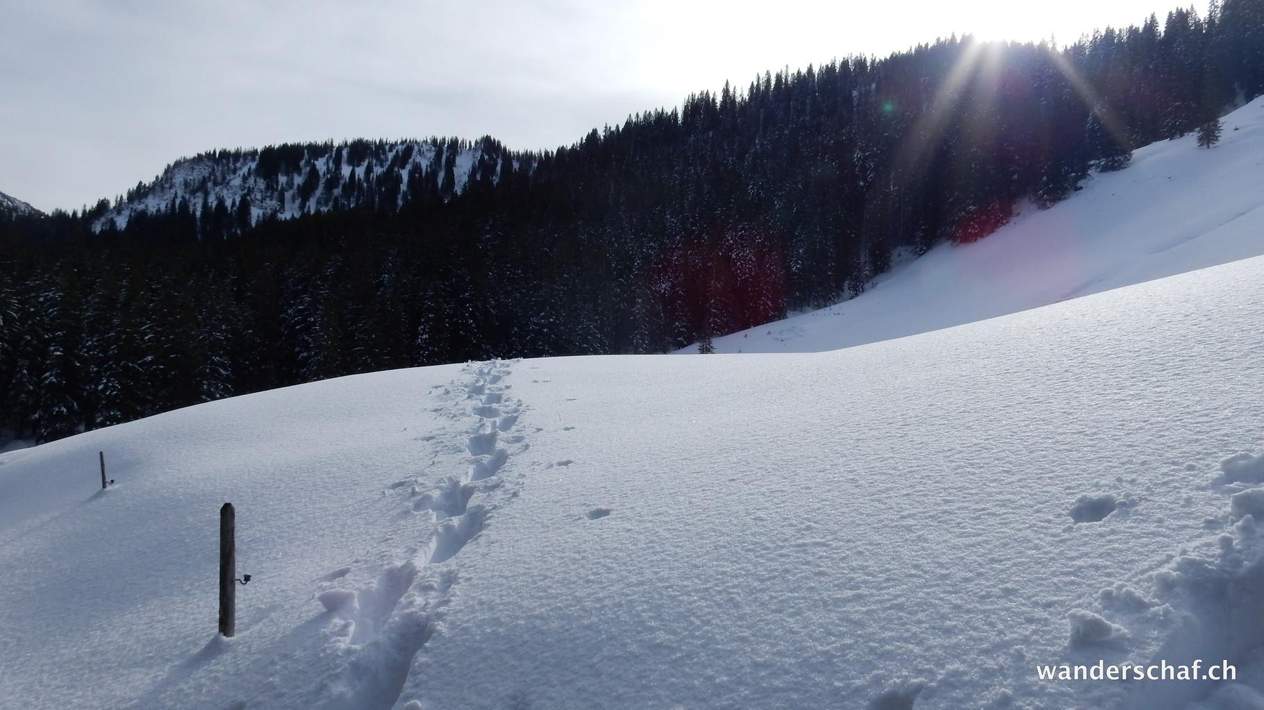 nach einigen Startschwierigkeiten haben wir sogar Schnee gefunden