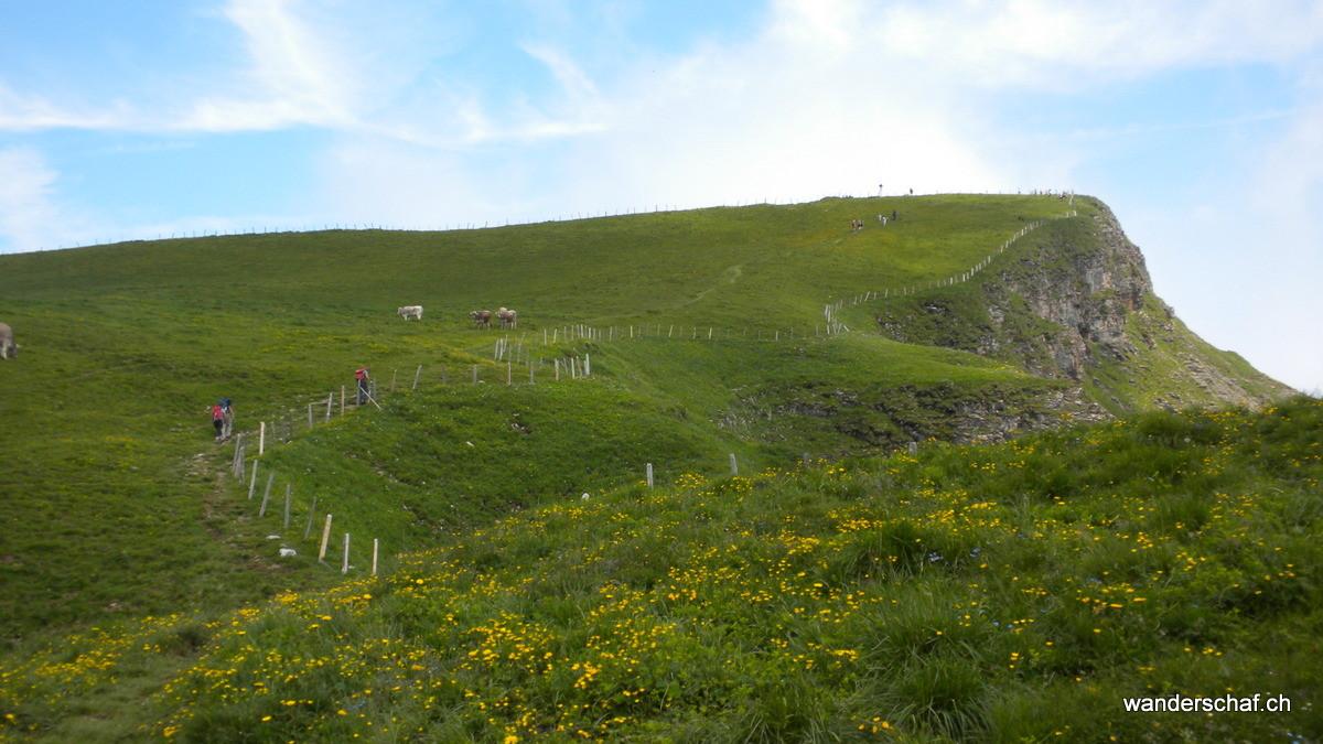 auf der Normalroute Richtung Gipfel vom Niederbauen Chulm