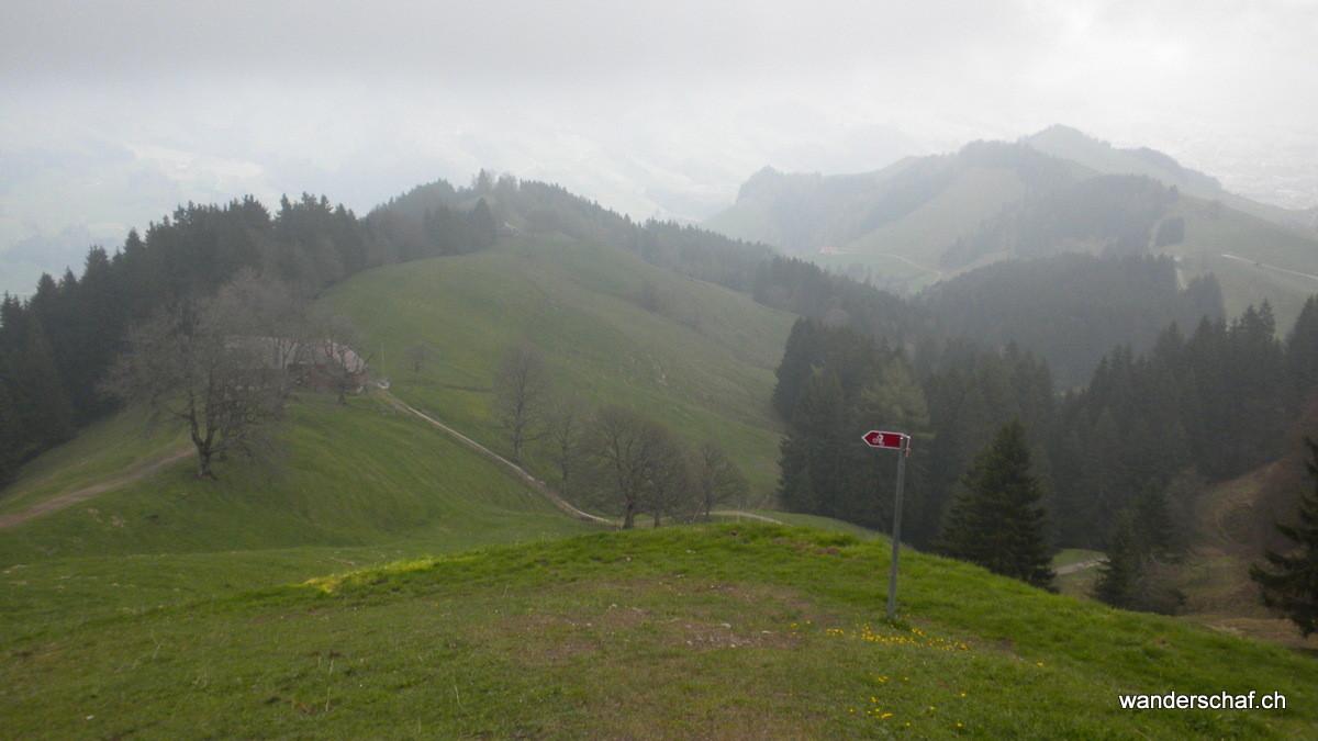Abstieg Richtung Himmelberg - Appenzell