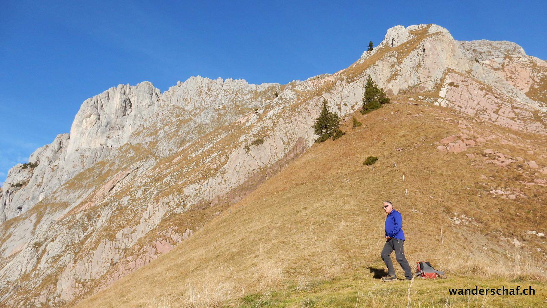 durch diesen Hang geht's hinauf zum Felsen, wo ein Seil über die Stufe hilft