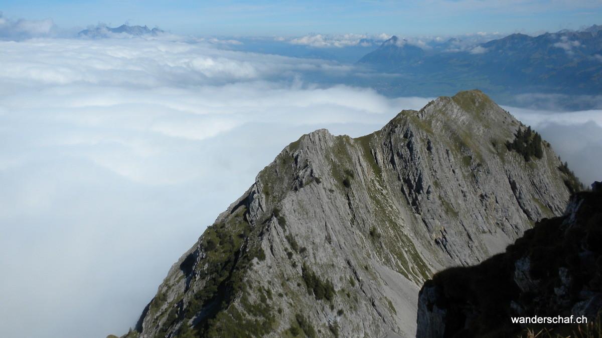 der Giswilerstock badet im Nebelmeer
