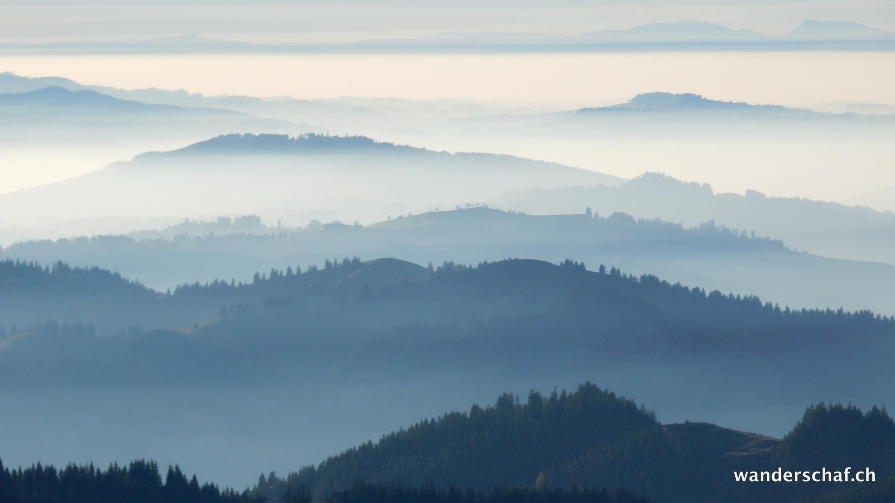 umherschleichender Nebel im Mittelland