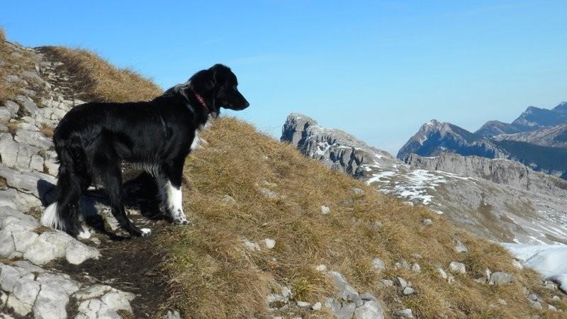 auf der Traverse zum Gipfel