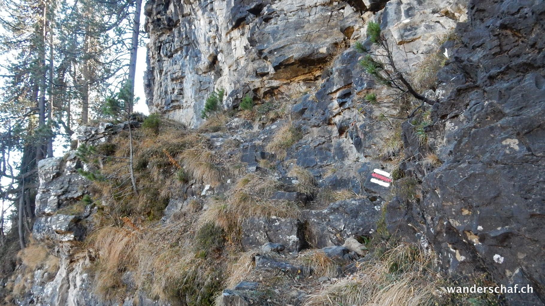 weiter geht's auf dem Bergweg Richtung Trogenalp