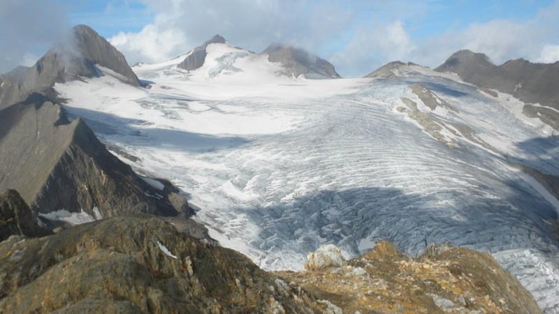 Blick über den Griesgletscher zum Rot- und Blinnenhorn
