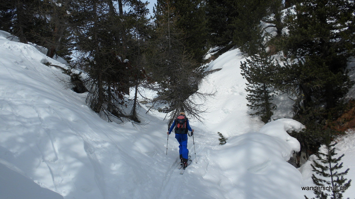 Aufstieg in der steilen Waldpartie