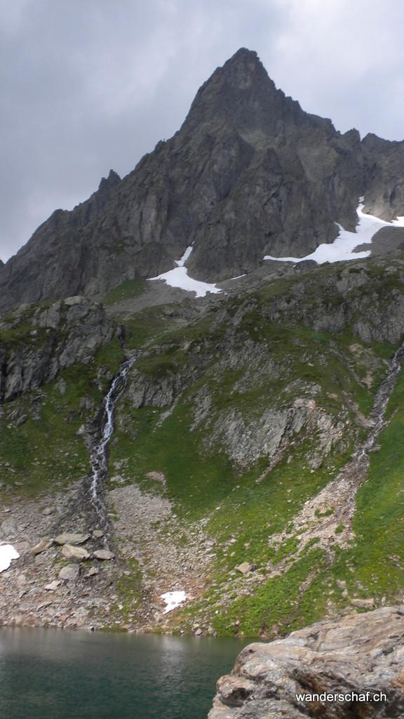 Mäntliser