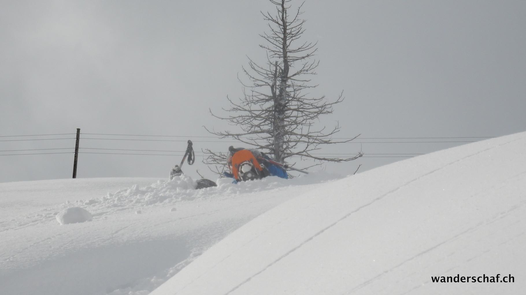 Es hat viel Schnee.....seeeehr vieeeeel Schnee!