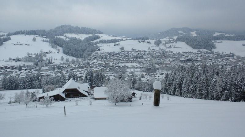 verschneites Langnau
