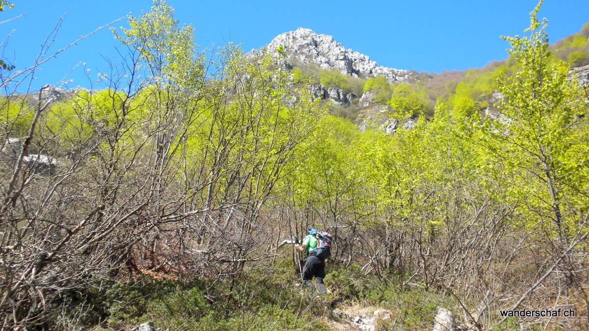 Im Aufstieg durch die Nordflanke Richtung Monte Resegone