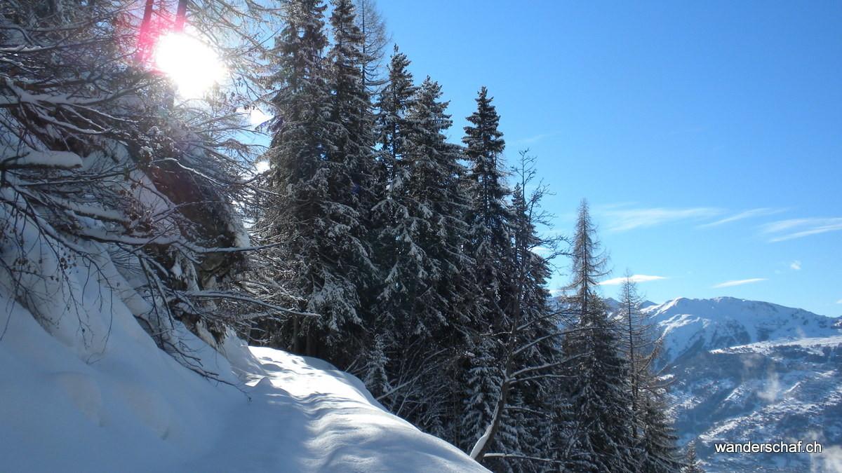 plötzlich ist das schönste Wetter und wir ziehen noch mit den Schneeschuhen los