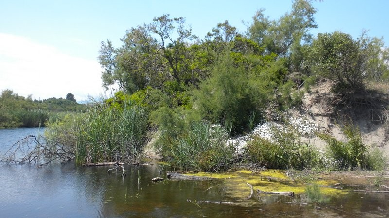 Einer der Süsswasserseen, welcher direkt am Strand gelegen ist.