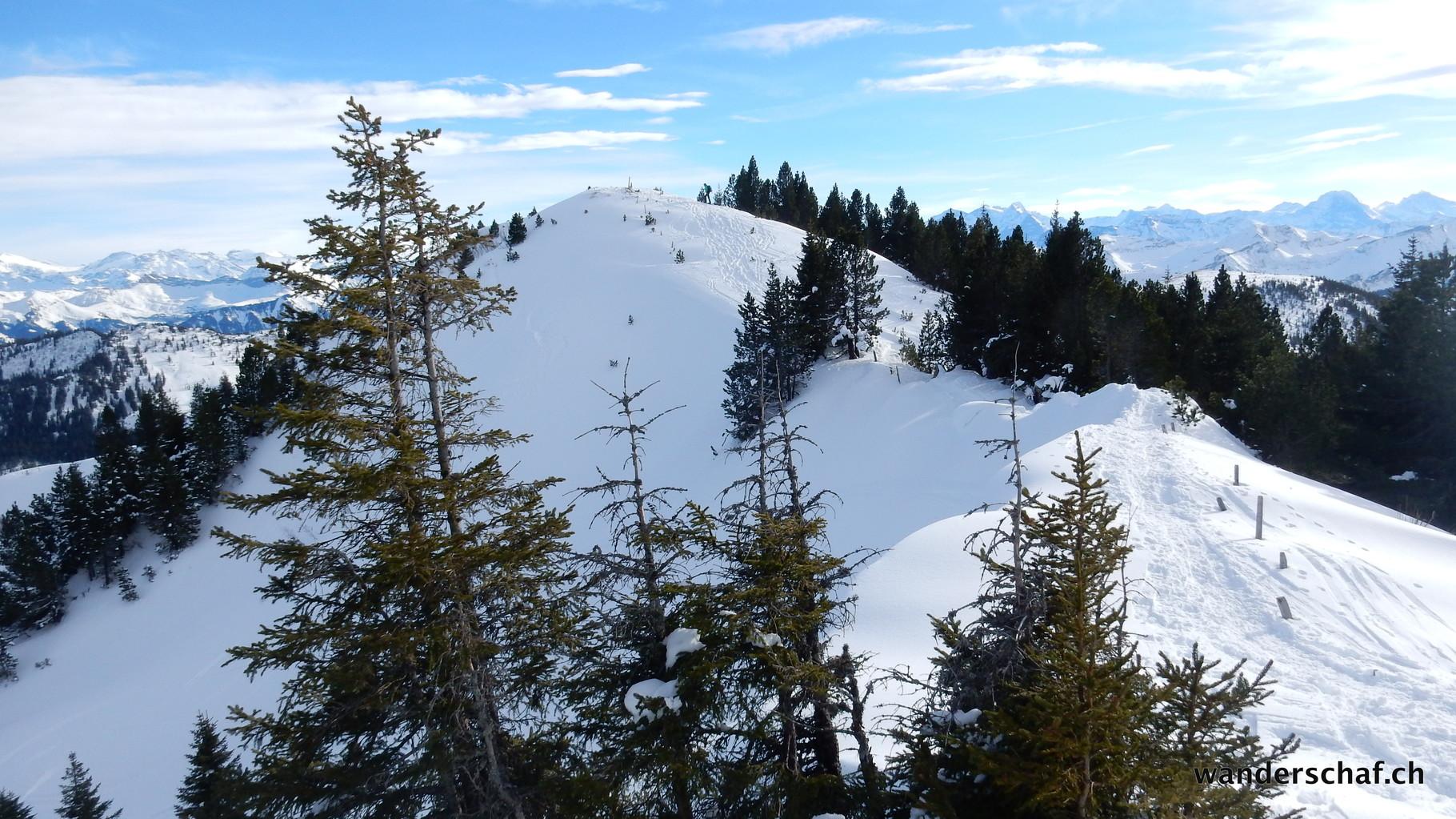 oberhalb Seewenegg